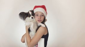 Beautiful teen girl in a Santa Claus cap and dog Continental Toy Spaniel Papillon joyfully kissing and fooling around on Royalty Free Stock Photo