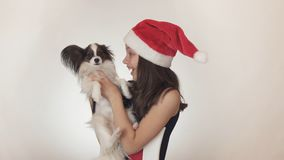 Beautiful teen girl in a Santa Claus cap and dog Continental Toy Spaniel Papillon joyfully kissing and fooling around on Royalty Free Stock Photos