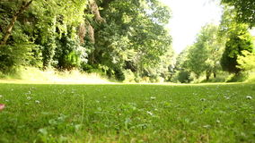 Beautiful teen walking away on the grass on a sunny day Royalty Free Stock Images