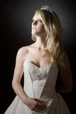Beautiful Teenage Bride with Long Blonde Hair Stock Images