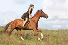 Beautiful teenage girl riding horse at the field Royalty Free Stock Image