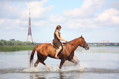 Beautiful teenage girl riding horse in the river. In summer Royalty Free Stock Photo