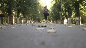 Beautiful teenager female jogging in the park early in an autumn morning to stay active and fit -. Beautiful teenager female jogging in the park early in an stock video footage