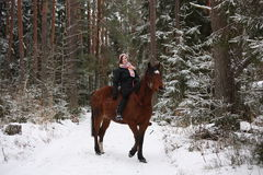Beautiful teenager girl riding brown horse in the forest Stock Photography