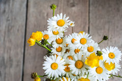 Beautiful tender bouquet of summer meadow flowers with wild cham Royalty Free Stock Photography