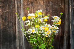 Beautiful tender bouquet of summer meadow flowers Royalty Free Stock Image