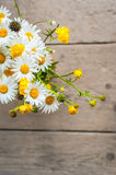 Beautiful tender bouquet of summer meadow flowers Royalty Free Stock Photography