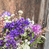 Beautiful tender bouquet of summer meadow flowers on wooden back Stock Photos