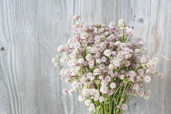 Beautiful tender bouquet of summer meadow flowers on wooden back. Ground. Floral composition in rural vintage style Stock Image