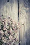 Beautiful tender bouquet of summer meadow flowers Stock Photo