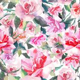 Beautiful tender gentle sophisticated wonderful lovely cute spring floral herbal botanical red powdery pink roses with green leave. S pattern watercolor hand Royalty Free Stock Photo