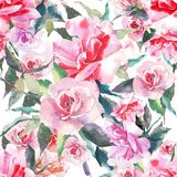 Beautiful tender gentle sophisticated wonderful lovely cute spring floral herbal botanical red powdery pink roses with green leave. S pattern watercolor hand Royalty Free Stock Image