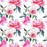 Beautiful tender gentle sophisticated wonderful lovely cute spring floral herbal botanical red powdery pink roses with green leave. S pattern watercolor hand Stock Photos