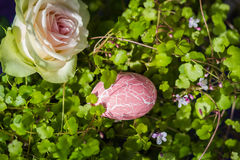 Beautiful tender rose with pink Easter egg in sunlight. Stock Photography