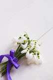 Beautiful tender snowdrops with purple ribbon on white wooden ba Stock Photography