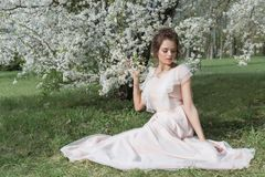 Beautiful tender sweet girl in a pink dress with a hairdo near blossoming tree on a sunny spring day royalty free stock photography