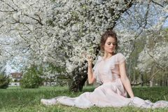 Beautiful tender sweet girl in a pink dress with a hairdo near blossoming tree on a sunny spring day stock photography
