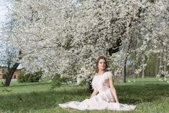 Beautiful tender sweet girl in a pink dress with a hairdo near blossoming tree on a sunny spring day stock photos