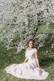 Beautiful tender sweet girl in a pink dress with a hairdo near blossoming tree on a sunny spring day stock photo