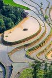 Beautiful terraced rice field in Hoang Su Phi in Vietnam. Beautiful terraced rice field in water pulling season Hoang Su Phi, Ha Giang province in Vietnam Stock Image