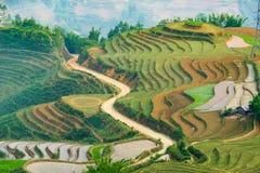Beautiful terraced rice field in Lao cai province in Vietnam. Beautiful terraced rice field in water pulling season Lao cai province in Vietnam Stock Photos
