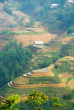 Beautiful terraced rice field in Lao cai province in Vietnam. Beautiful terraced rice field in water pulling season Lao cai province in Vietnam Royalty Free Stock Image