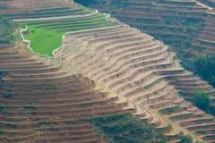 Beautiful terraced rice field in Lao cai province in Vietnam. Beautiful terraced rice field in water pulling season Lao cai province in Vietnam Royalty Free Stock Photo