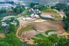 Beautiful terraced rice field in Lao cai province in Vietnam. Beautiful terraced rice field in water pulling season Lao cai province in Vietnam Royalty Free Stock Images