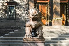 And terrible lion in the temple of Buddha, temple of the Buddhists and its Central courtyard. the concept of peaceful religion royalty free stock photo