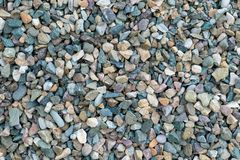 Beautiful texture of colored small stones, background of stones stock image