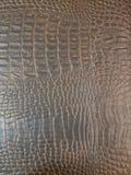 Brown crocodile leather texture stock photo