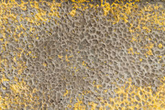 Beautiful textures Old concrete with flaking paint. Stock Image