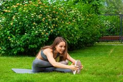 Woman training in the park stock image