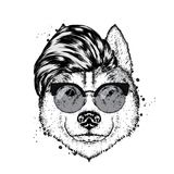 A beautiful thoroughbred dog with a stylish hipster hairdo. Vector illustration for a postcard or a poster, print for clothes. Husky in clothes and accessories vector illustration