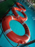 Three orange colored tubes to float in the swimming pool of blue color stock photography