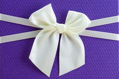 Beautiful tied bow on the gift close-up. Copy space for text Royalty Free Stock Image