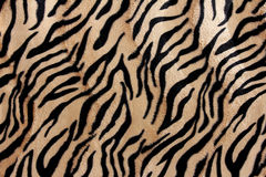 Beautiful tiger fur - colorful texture with orange, beige, and b Stock Photo