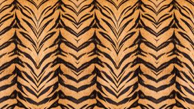 Beautiful tiger fur. Beautiful tiger fur pattern texture background Royalty Free Stock Images