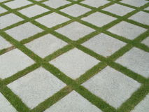 Beautiful tiles in garden Stock Images