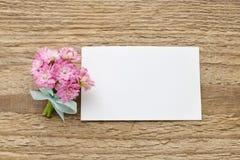 Beautiful tiny bouquet of pink kalanchoe blossfeldiana flowers o Royalty Free Stock Photo
