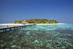 Beautiful tiny island. Indian ocean. Maldives. Stock Photo