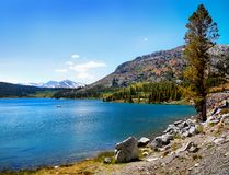 Tioga Pass Lake Sierra Nevada Mountains. Beautiful Tioga Lake is located in the magnificent Eastern Sierra Nevada Mountains. Tioga Pass Road, California Royalty Free Stock Images