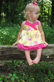 Beautiful Toddler. Color photograph of a toddler girl Royalty Free Stock Photo