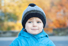 Beautiful toddler boy in blue clothes on sunny day Stock Photography