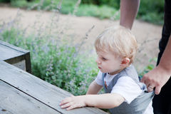 Beautiful toddler boy crawling on wooden stairs Stock Images