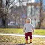 Beautiful toddler boy walking outdoors Royalty Free Stock Photography