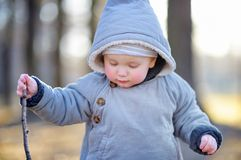 Beautiful toddler boy walking outdoors Stock Photos