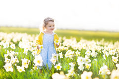 Beautiful toddler girl field of white daffodil flowers Stock Image