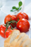 Beautiful tomatoes on grill party Stock Photos