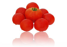 Beautiful tomatoes with reflections Royalty Free Stock Photo